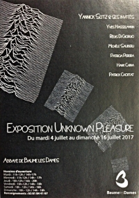 "Exposition ""Unknown Pleasures"""